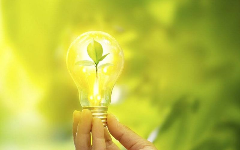 Design Sem Nome (25) - Contabilidade em Campo Grande - RJ | Verdant Gestão Contábil - O que é um negócio sustentável?